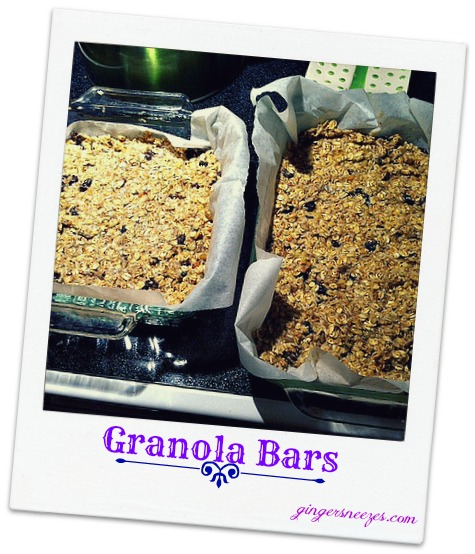 oatmeal bars preoven